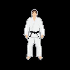 Judo/Ju-jitsu/BJJ